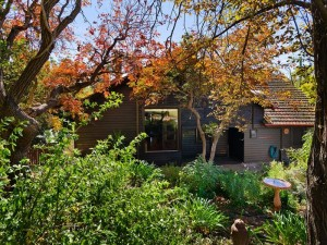 26-greenhill-avenue-castlemaine-vic-3450-real-estate-photo-18-large-8662272