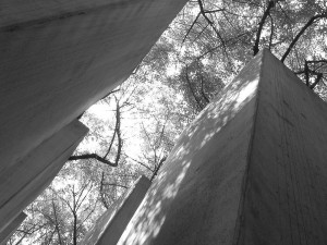 800px-Through_the_pillars_in_The_Garden_of_Exile_at_the_Jewish_Museum,_Berlin